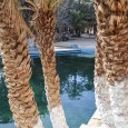 I take a semi-rest day to enjoy the spectacular scenery of the Ziz gorges and return to the hot springs of Hammat Moulay Ali Cherif, this time to visit the […]