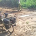 After the rough roads of the ring road in the North West region, Cyril joined me again and we are heading to Yaoundé via dirt roads only. It takes a […]